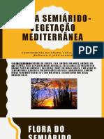 TRABALHO DE GEOGRAFIA-POWER POINT.pptx