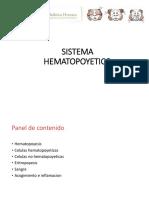 06. Histologia _Sistema Hematopoyetico