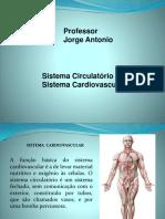 aula de sistema circulatório.pptx