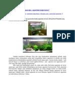Aquarium air tawar aquascape.docx