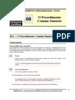 DPC 08 - O Procedimento Comum Sumário.pdf