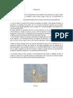 Introducción flora y fauna .docx