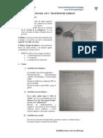 Psicopatologia de la Ansiedad (Resumen)