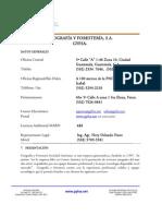Perfil Profesional GYFSA 2010 Agosto