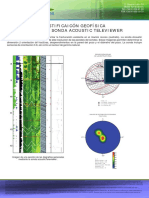 Acoustic Televiewer