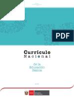 Curriculo Nacional 2017 3