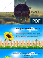 Biogeochemical Cycle (1)