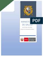 Minsa - Auditoria Integral (Analisis Organizacional)