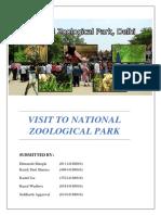 Report on NZP.docx