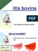 Curso Ext Vac Leche Mastitis-1