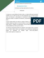 CarreraSalazar_Silvia_M05S4PI.docx