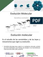 Evolución Molecular.pptx