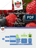 Consolidado Cap Peru Final.pptx