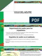 Ciclo Del Azufre-ASTO