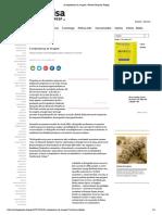 A onipresença da imagem _ Revista Pesquisa Fapesp.pdf