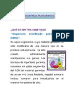 ALIMENTO TRANSGENICOS.docx