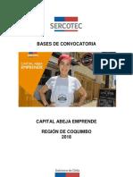 Abeja Emprende 2018 Coquimbo_Visada