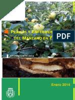 Plagas y Enfermedades Del Manzano