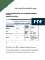 01 Joel Alemán_Planificación IIIP_2018 Completa