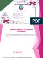 Características Básicas Del Currículo