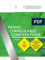 fichas curriculares