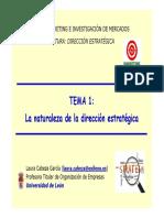 TEMA_1._LA_NATURALEZA_DIRECCION_ESTRATEG.pdf