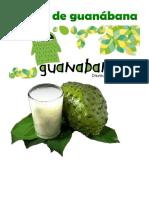 Yogurt de Guanábana