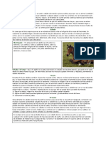 Cómo descansan los caballos.pdf