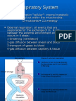 Physiology, Lecture 5, Respiratory System (slides)