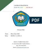 LAPORAN PRAKTIKUM (2).docx