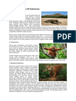 Jenis Jenis Fauna Di Indonesi1
