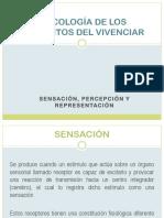 psicologa_de_los_elementos_del_vivenciar.pptx