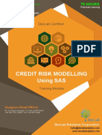 Online Credit Risk Analytics and Modeling
