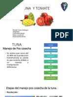 Tuna y tomate