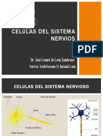 Celulas Del Sistema Nervios