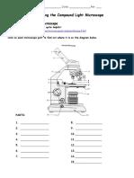 microscope webquest 9