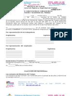 Formatos Para Constituir y Reestructurar La CMHST