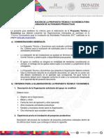 GU_A_PARA_LA_ELABORACI_N_DE_LA_PROPUESTA_T_CNICA.pdf