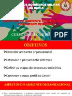 AULA ASPECTOS DO AMBIENTE ORGANIZACIONAL E PROCESSO DECISÓRIO 2.pptx