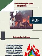 brigada incendio.ppt