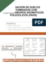 Hidrocarburos Aromáticos Policíclicos 3 (1)