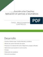 Capacitacio-cauchos-Pericia.pdf