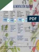 plan-de-alimentacion-de-JORDI-PINEDA.pdf