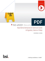 45001 TECHNICAL REPORT.pdf