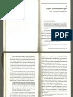 Sobre a fenomenologia bicudo.pdf
