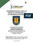 Artokinemática de las articulaciones de la extemidad inferior - Alberto Gonzalez (UDEC)
