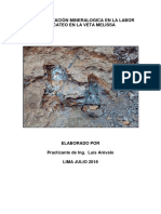 Caracterizaciòn Mineralogica en La Labor de Cateo en La Veta Melissa