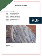 Descripción de Fósiles