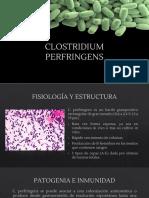 CLOSTRIDIUM PERFRINGENS.pptx