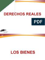 Derecho Civil (Reales y Obligaciones).ppt